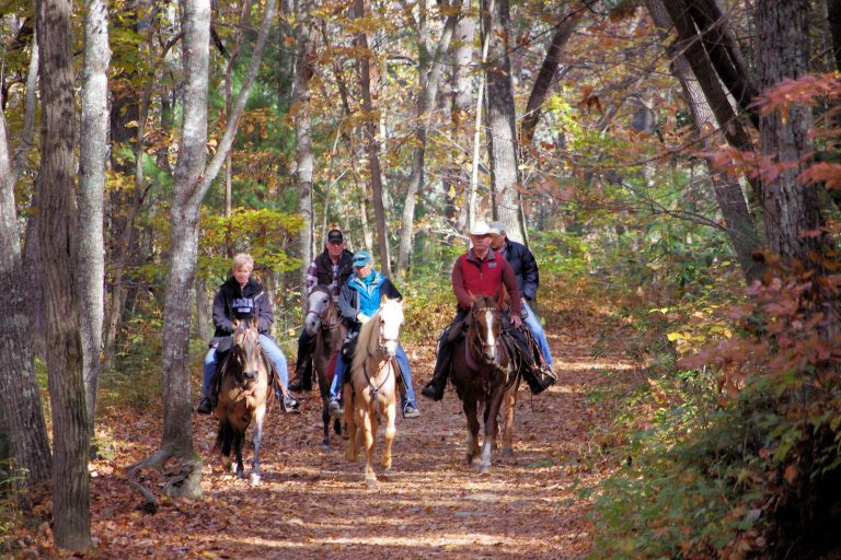 Horse riding on DuPont Forest Trails
