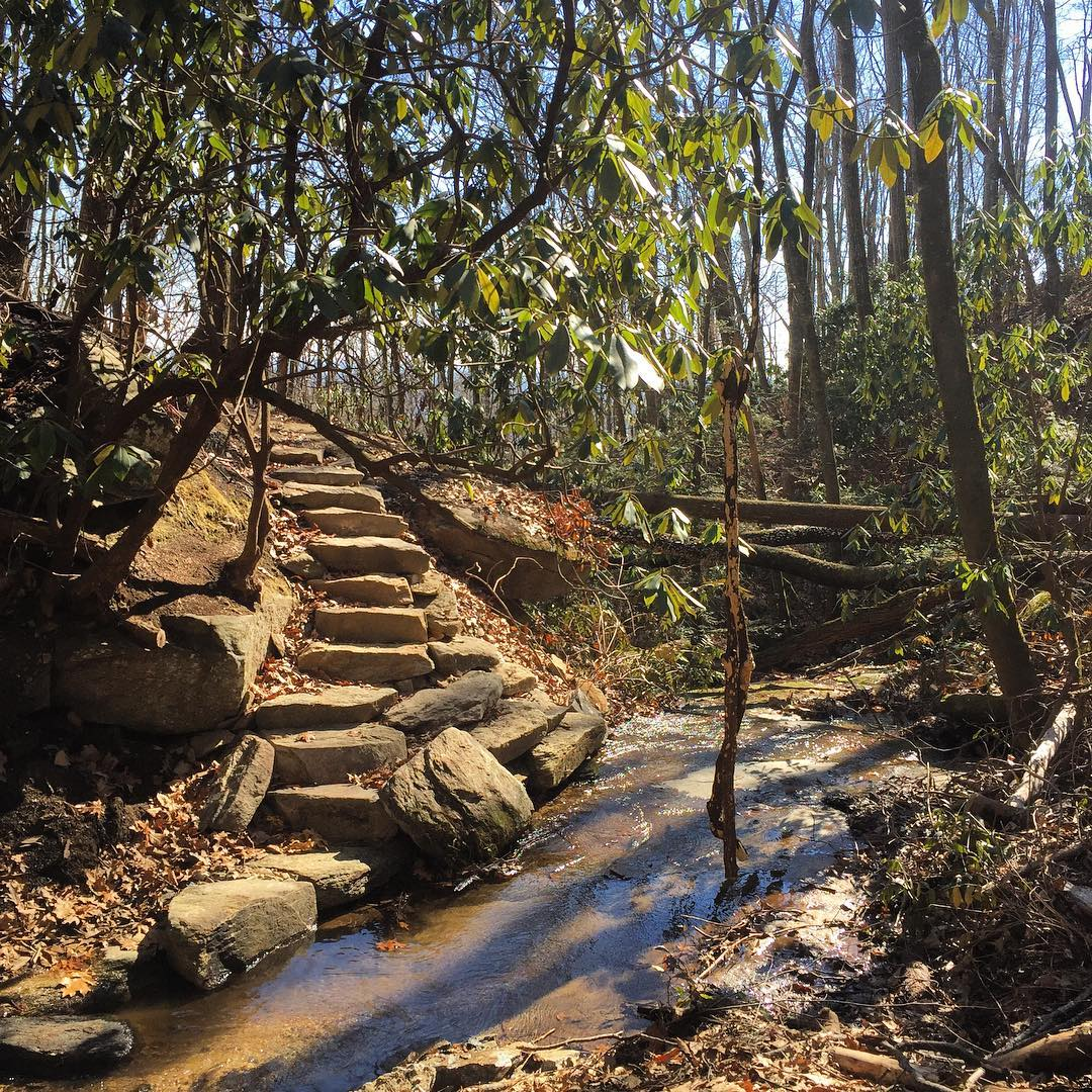 WPM Trail – photo by Brad Allen