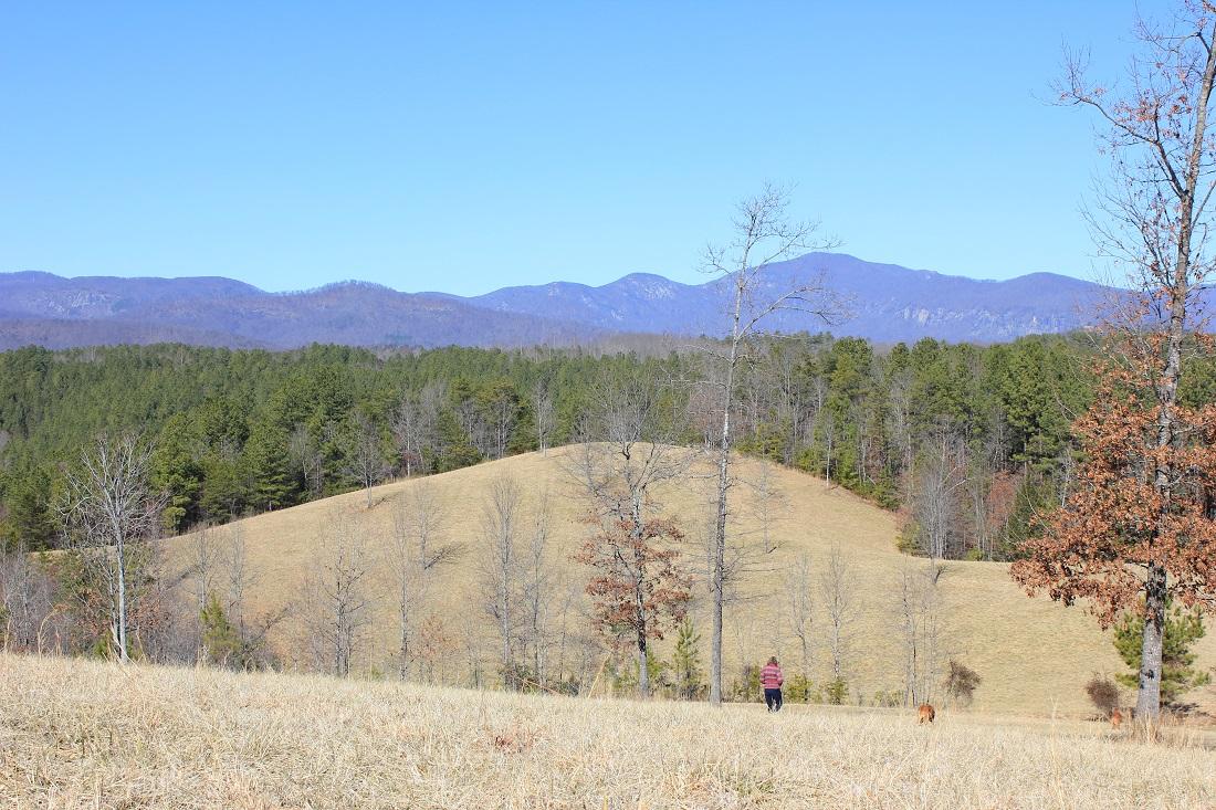 Walnut Creek Preserve view