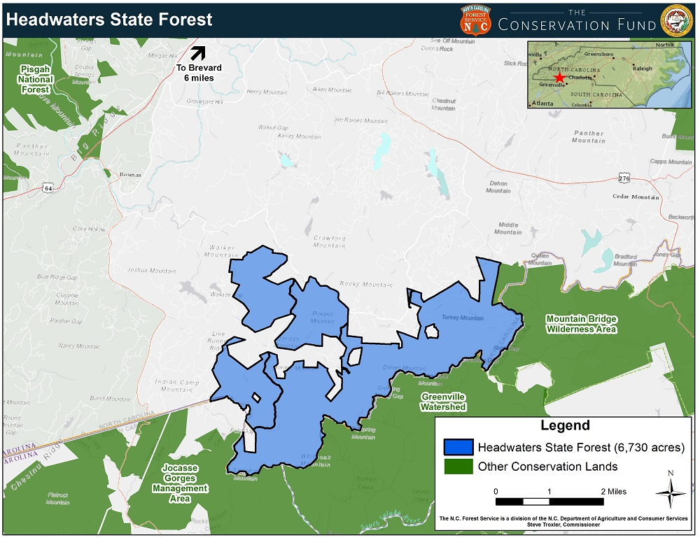 Headwaters State Forest | Conserving Carolina on