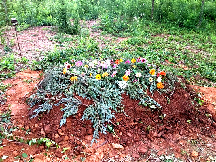 Fresh grave with flowers