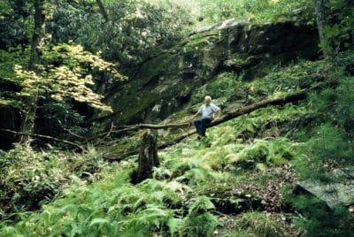 John Humphrey in the woods, 2006