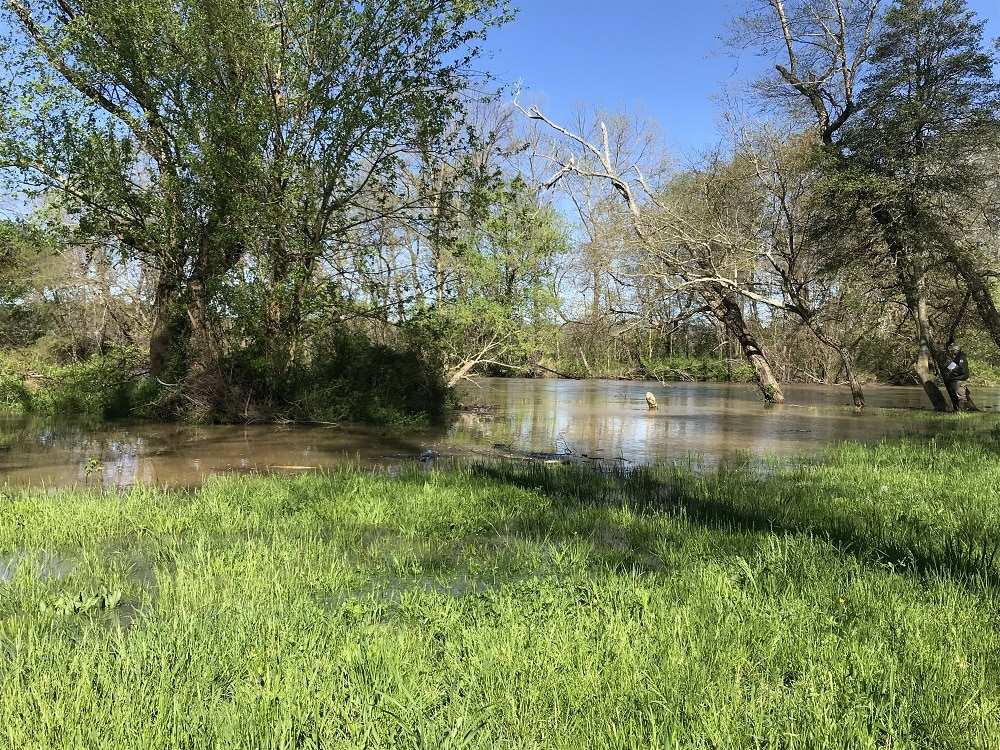 Flooded fields at the mouth of Mud Creek