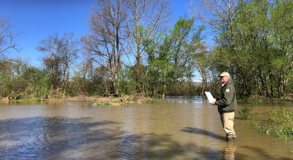 Scott Loftis wades into floodwaters at the Mouth of Mud Creek.
