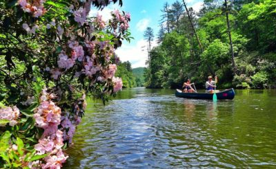 Spring on the upper French Broad River