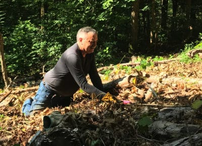 Greg Miner digging out kudzu crowns