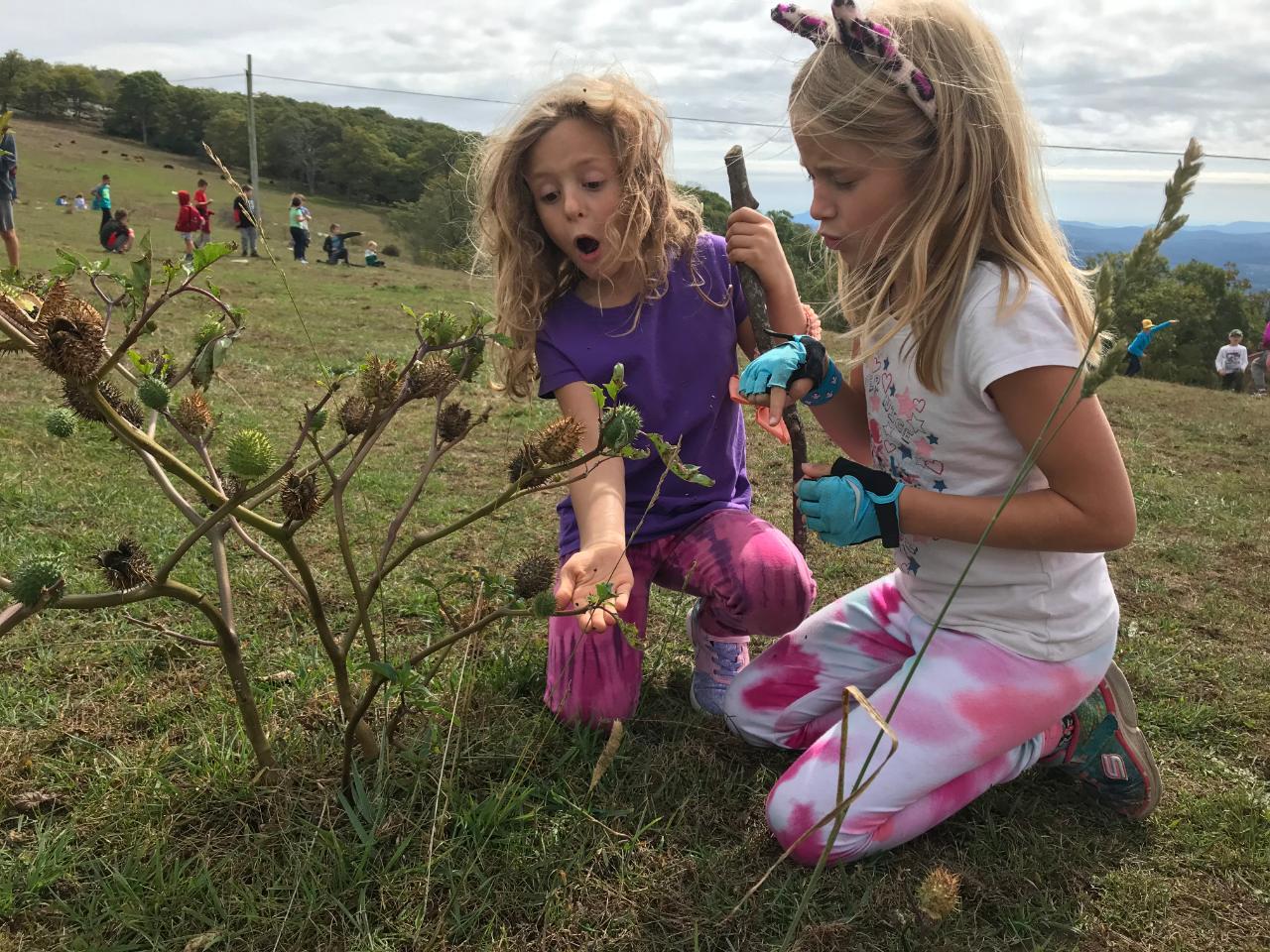 girls at Fernleaf Bearwallow field trip