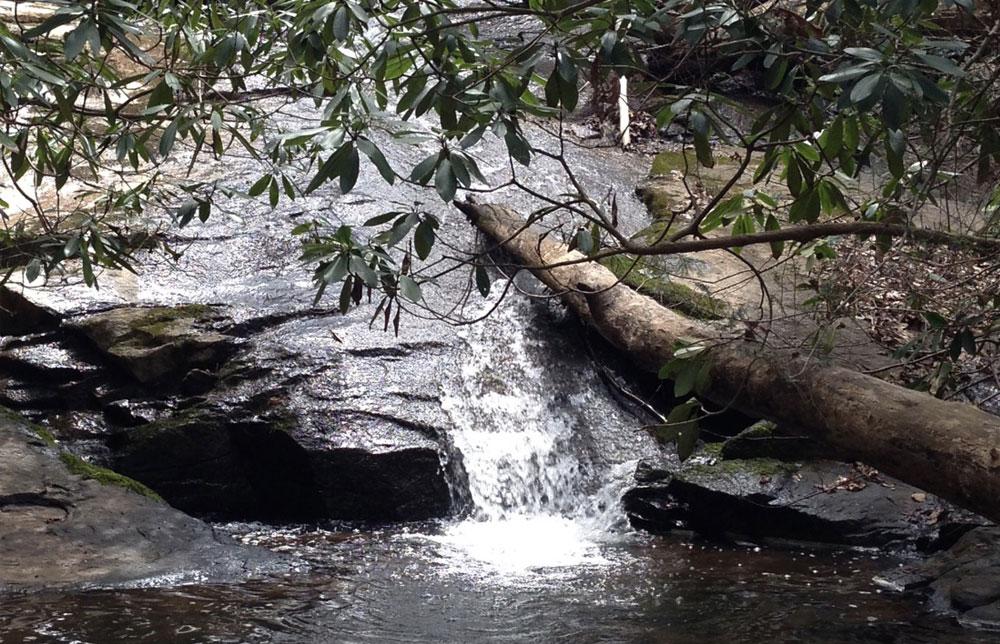 Bell Park Creek