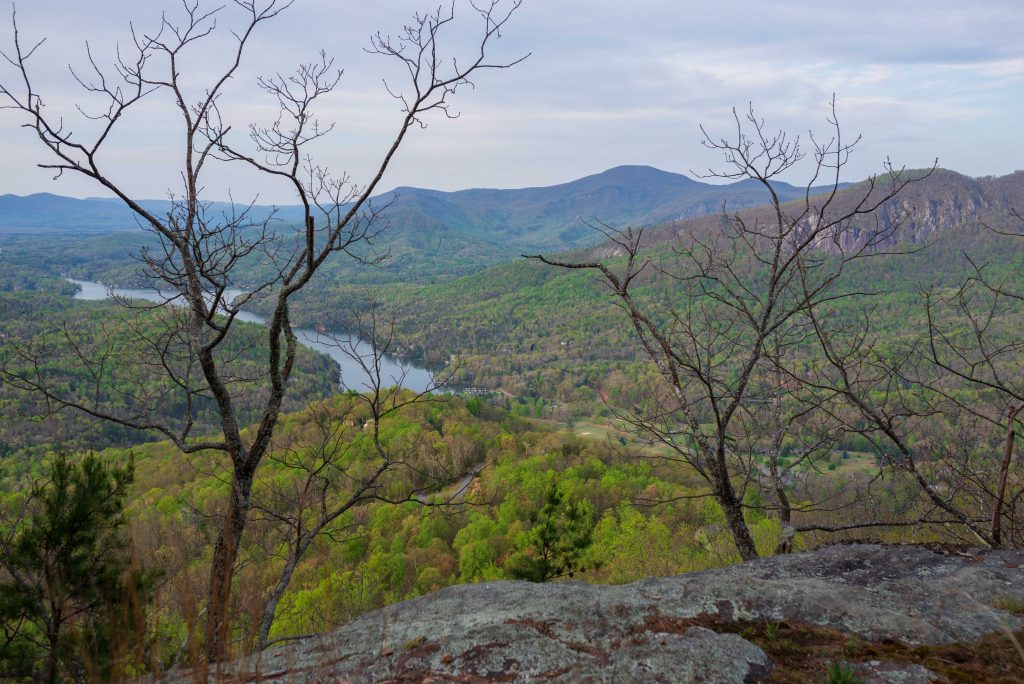 Spring view from Youngs Mountain Trail. Photo by Pat Barcas.