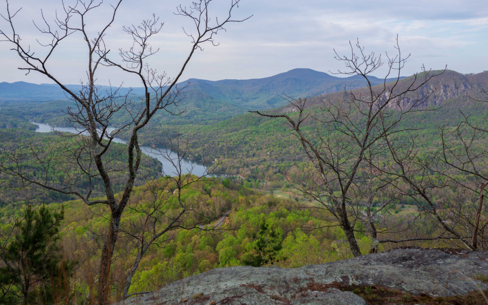 Spring view from Youngs Mountain Trail. By Pat Barcas.