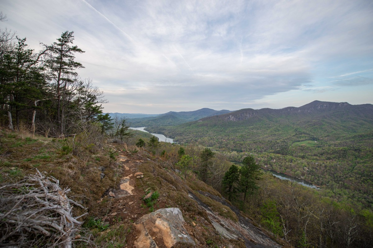 View from Youngs Mountain Trail. By Pat Barcas.