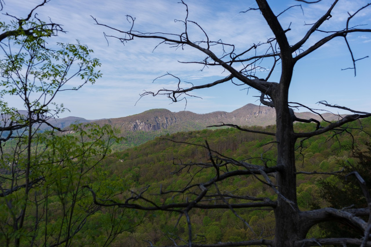 View of Rumbling Bald and Shumont from Youngs Mountain Trail. By Pat Barcas.