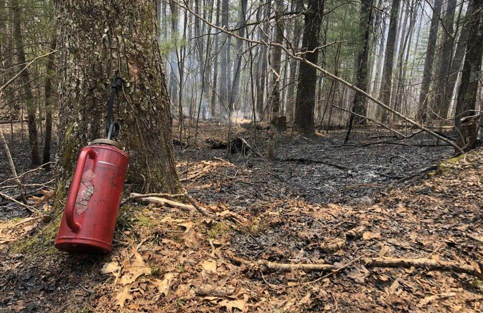 Controlled burn at Florence Nature Preserve
